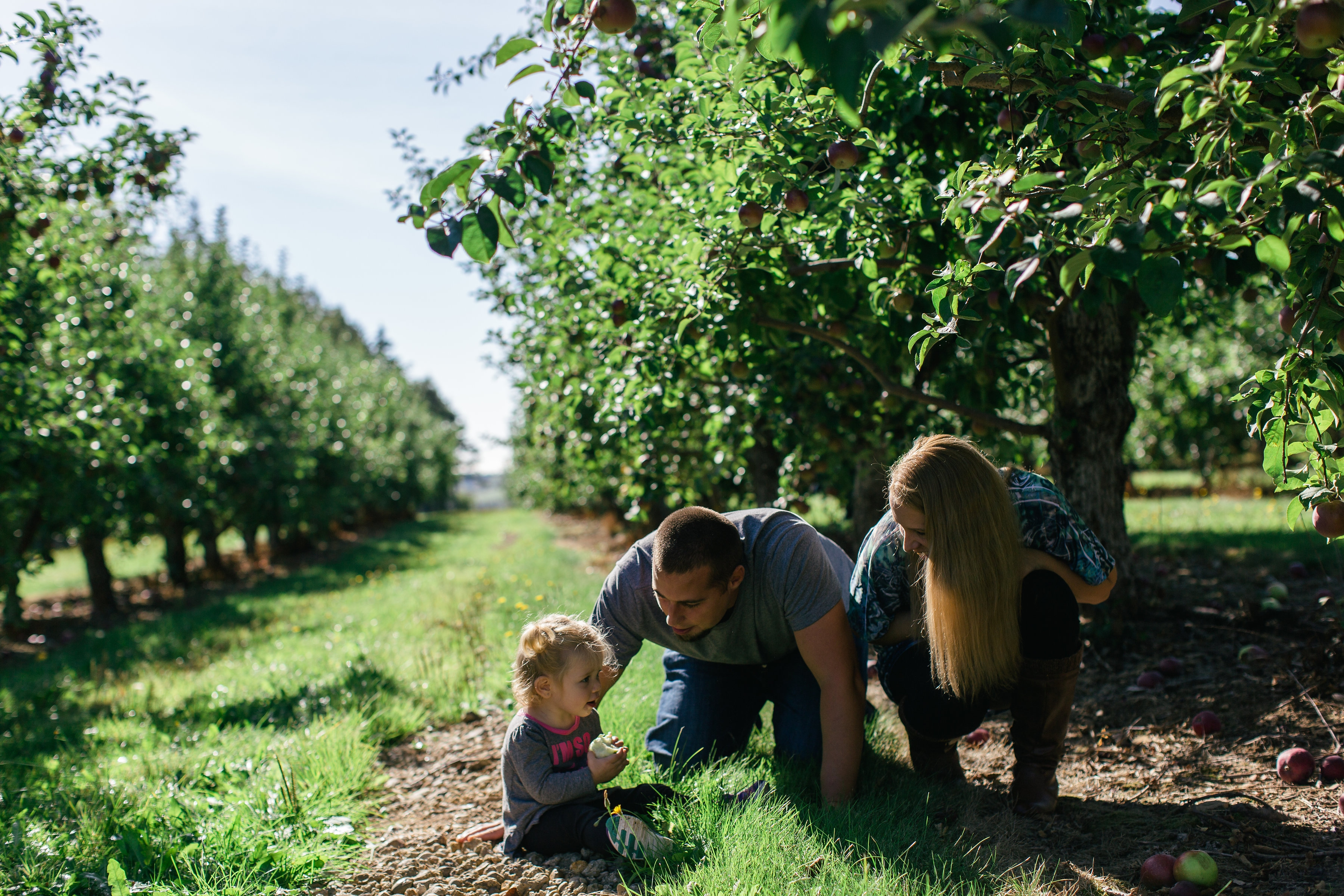 Belliveau Orchards